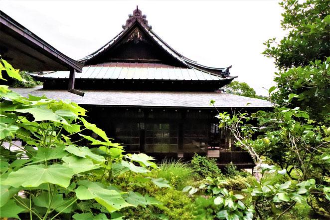 あじさい鍼灸マッサージ治療院 東慶寺建物