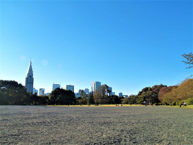 新宿御苑の風景式庭園