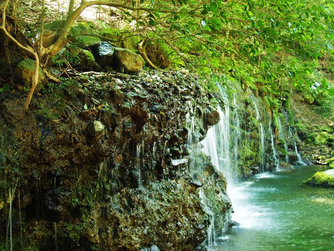 あじさい鍼灸マッサージ治療院 箱根千条の滝