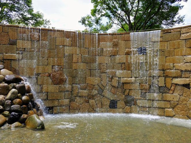 あじさい鍼灸マッサージ治療院 新宿中央公園の新宿ナイアガラの滝