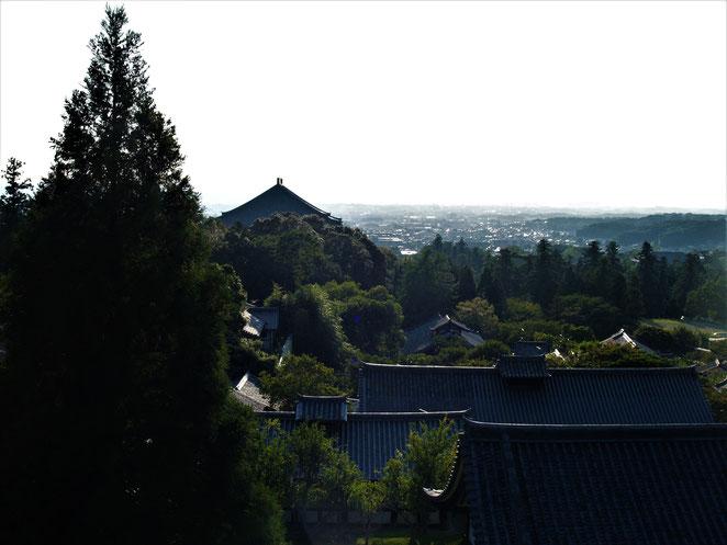 あじさい鍼灸マッサージ治療院 長谷寺の本堂からみた風景