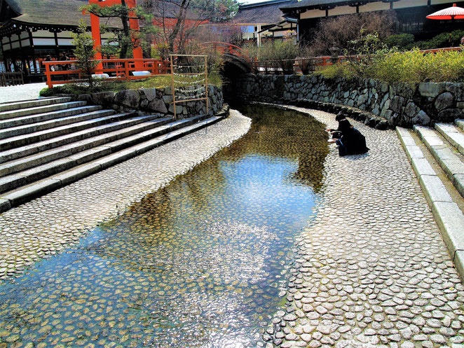 あじさい鍼灸マッサージ治療院 下鴨神社の御手洗川