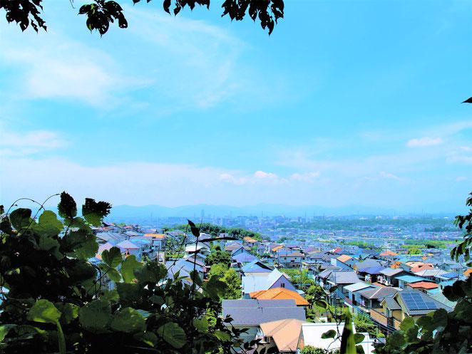 あじさい鍼灸マッサージ治療院 高幡不動 高台から見た景色