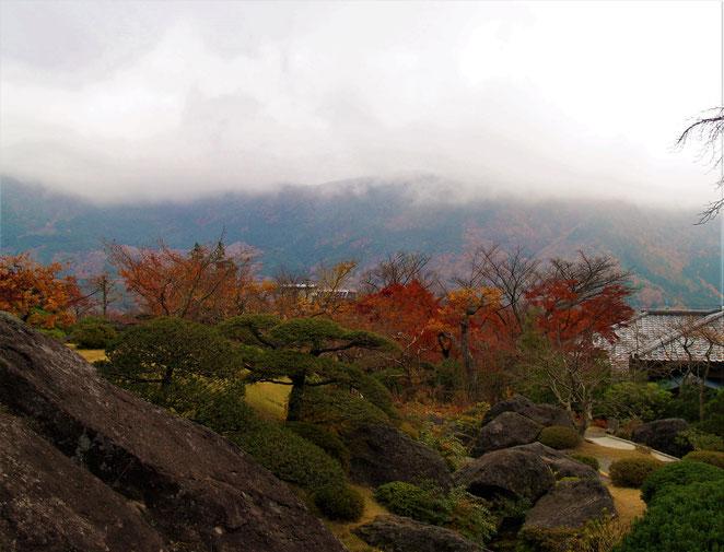 あじさい鍼灸マッサージ治療院 箱根美術館 庭園と箱根の山々