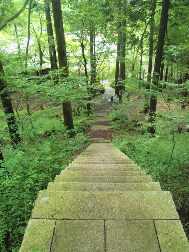 あじさい鍼灸マッサージ治療院 稲荷様に行くには細い階段を上らないといけない