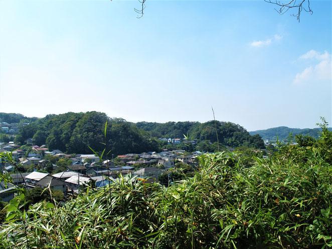 あじさい鍼灸マッサージ治療院 杉本寺境内からみた景色