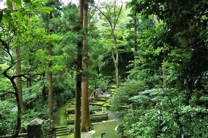 あじさい鍼灸マッサージ治療院 東慶寺のお墓