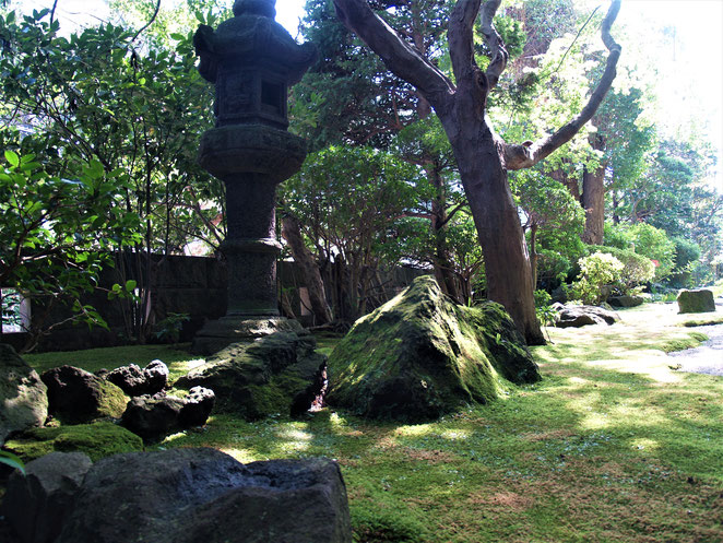 あじさい鍼灸マッサージ治療院 報国寺の庭
