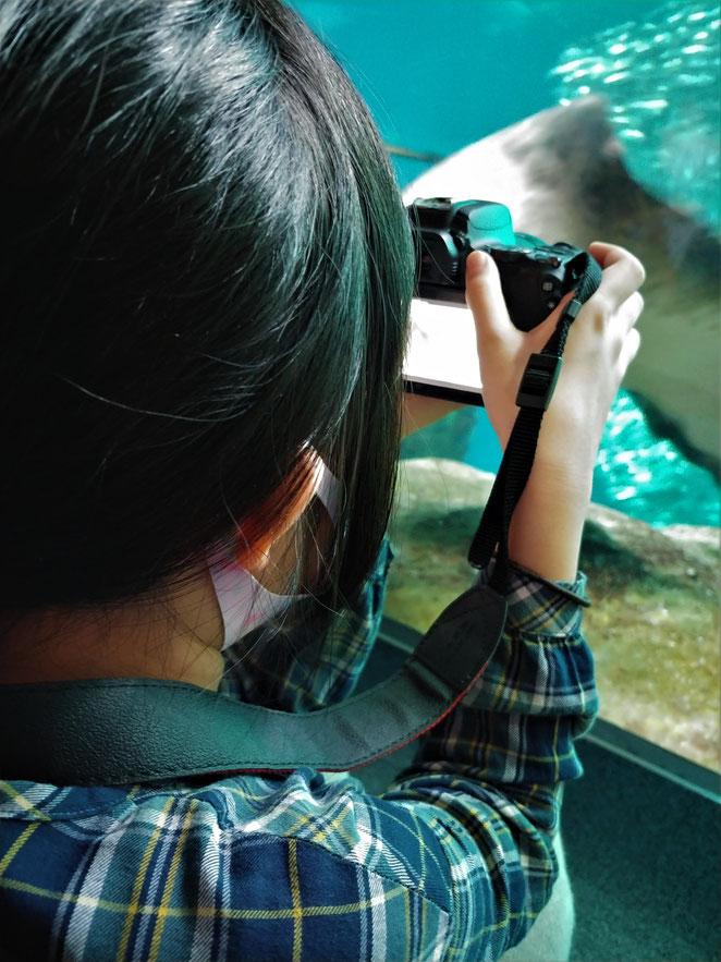 あじさい鍼灸マッサージ治療院 一眼レフカメラで撮影する娘