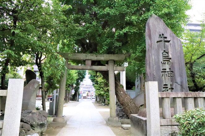 あじさい鍼灸マッサージ治療院 牛嶋神社の碑