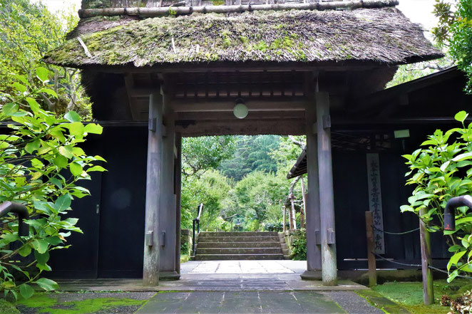 あじさい鍼灸マッサージ治療院 東慶寺の門