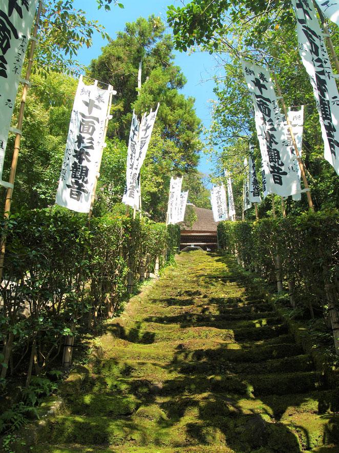 あじさい鍼灸マッサージ治療院 杉本寺の階段