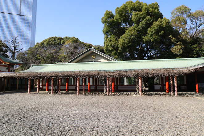 あじさい鍼灸マッサージ治療院 日枝神社の境内の藤棚