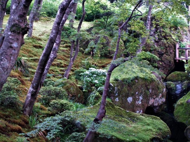あじさい鍼灸マッサージ治療院 箱根美術館の庭園 大きな岩が景色をつくる