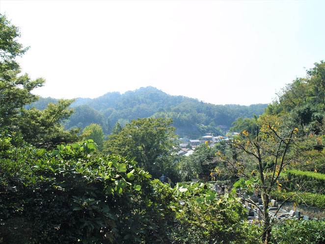 あじさい鍼灸マッサージ治療院 浄妙寺境内 高台から見る景色