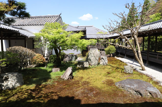 あじさい鍼灸マッサージ治療院 南禅寺の方丈庭園