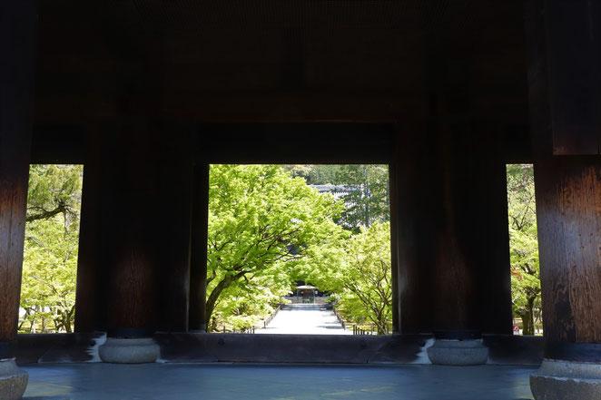 あじさい鍼灸マッサージ治療院 三門の景色