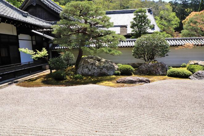 あじさい鍼灸マッサージ治療院 南禅寺方丈の庭園