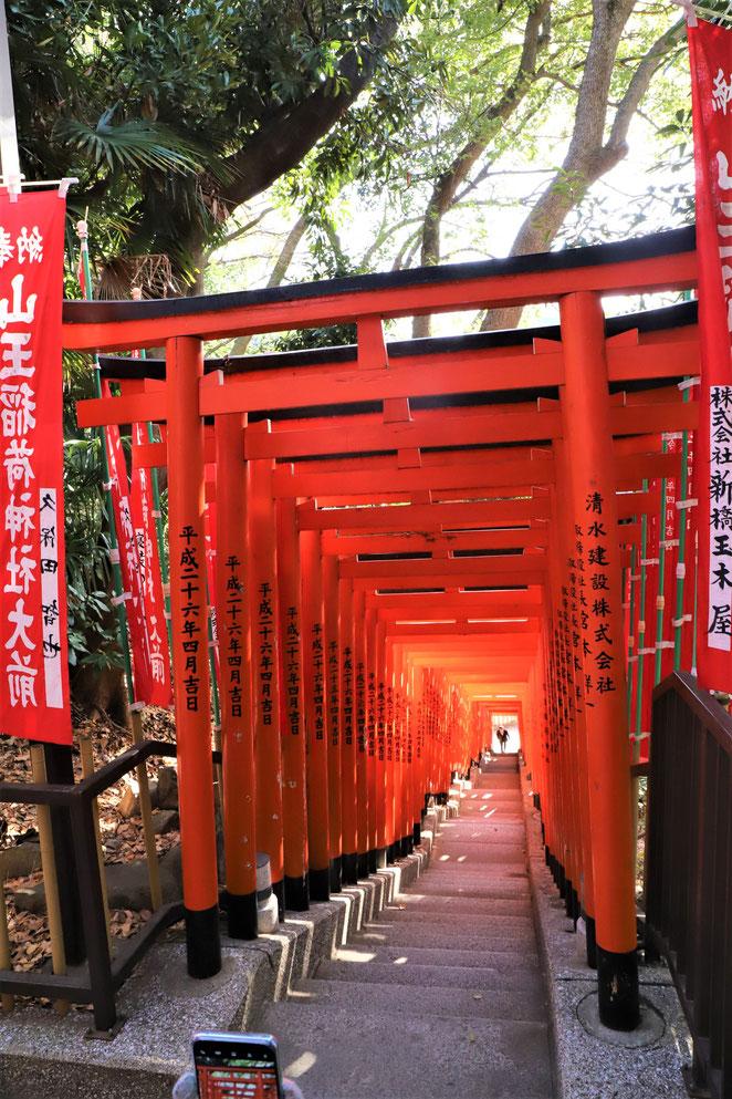 あじさい鍼灸マッサージ治療院 山王稲荷神社の千本鳥居