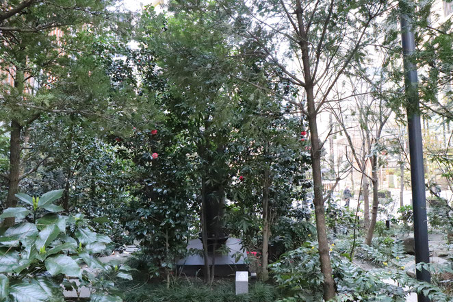 あじさい鍼灸マッサージ治療院 福徳の森