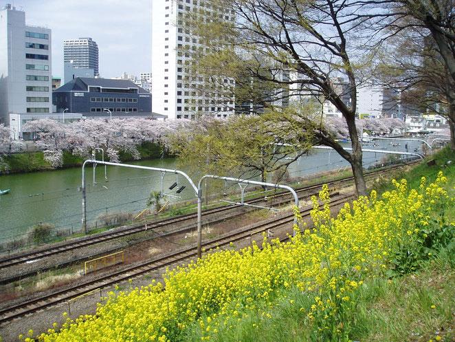 あじさい鍼灸マッサージ治療院院 2011年4月10日の飯田橋