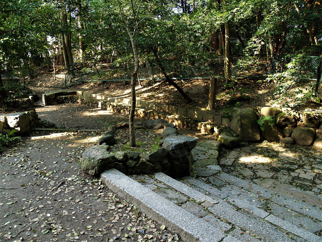 あじさい鍼灸マッサージ治療院 木嶋神社の元糺の森と元糺の池