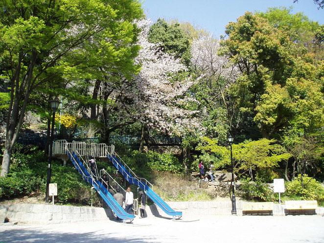 あじさい鍼灸マッサージ治療院院 東日本大震災からひと月後の地元公園