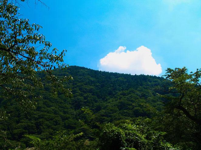 あじさい鍼灸マッサージ治療院 箱根の山々