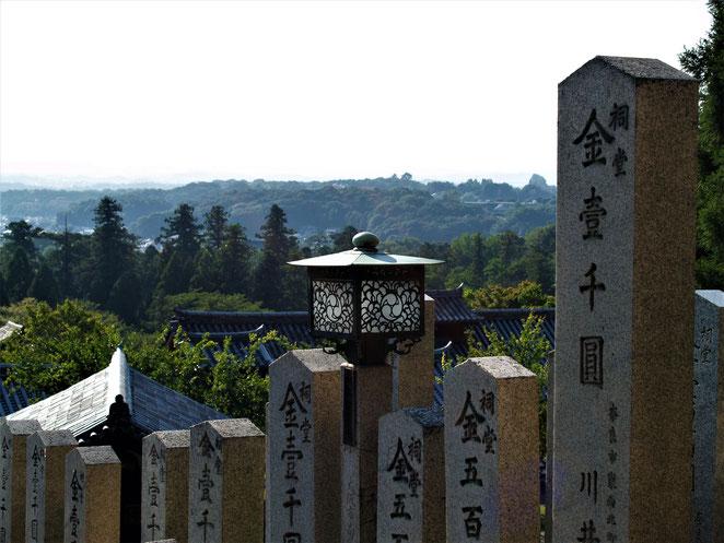 あじさい鍼灸マッサージ治療院 長谷寺からの景色