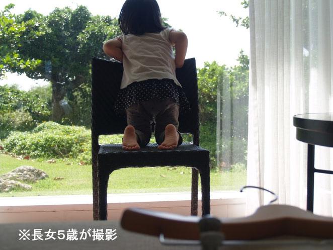 あじさい鍼灸マッサージ治療院 長女の撮影した写真