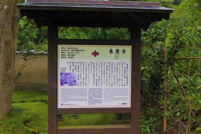 あじさい鍼灸マッサージ治療院 東慶寺案内板