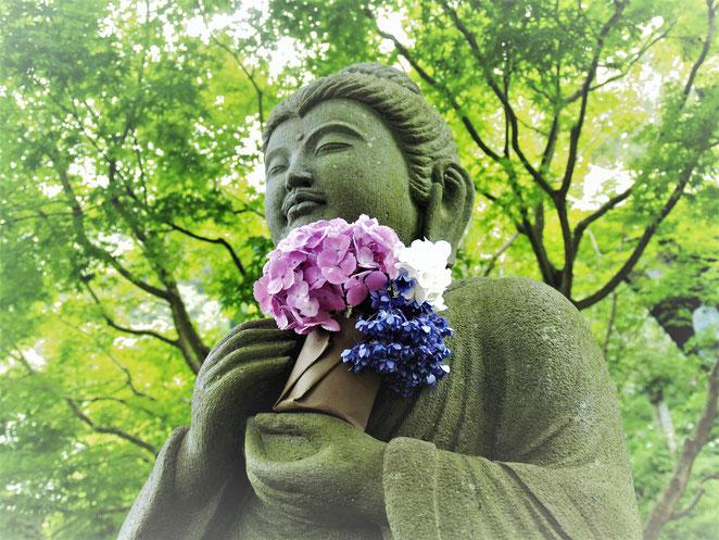 あじさい鍼灸マッサージ治療院 長谷寺の紫陽花