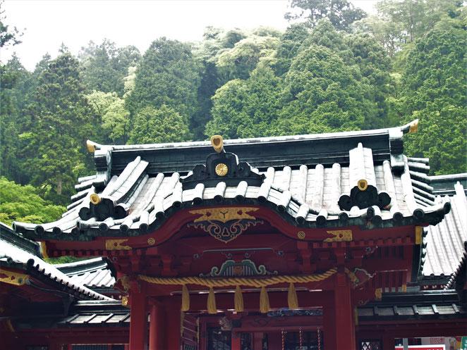 あじさい鍼灸マッサージ治療院 箱根神社本殿