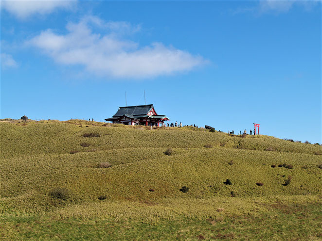 あじさい鍼灸マッサージ治療院 箱根神社元宮。山頂にポツンとある。