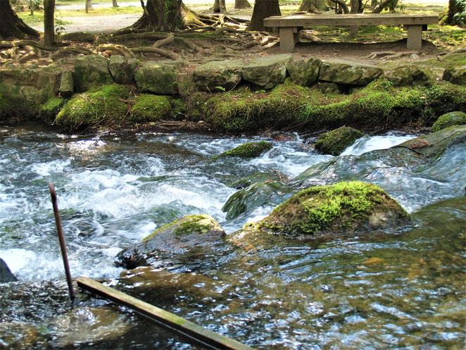 あじさい鍼灸マッサージ治療院 上賀茂神社境内の川