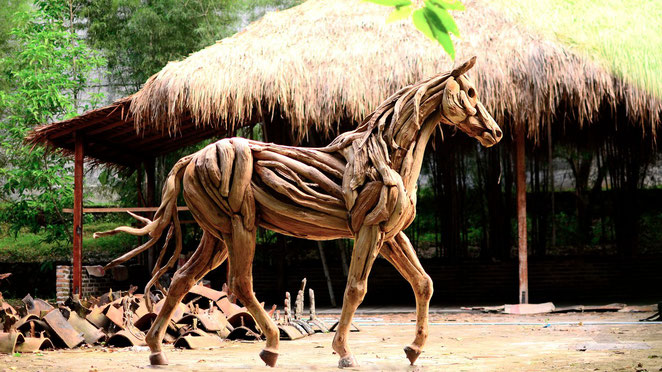Walking Thoroughbred Stallion