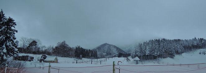 2014年いぶきの里スキー場オープン