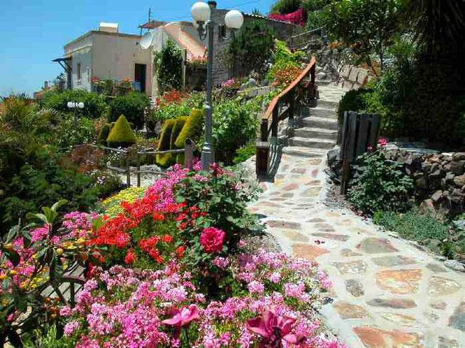 Fincagelände zwischen den Häusern mit vielen Blumen auf der Finca mit restaurierten Ferienhäusern in Guia de Isora auf teneriffa