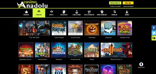 Anadolu Casino Casino Ekran Görüntüsü