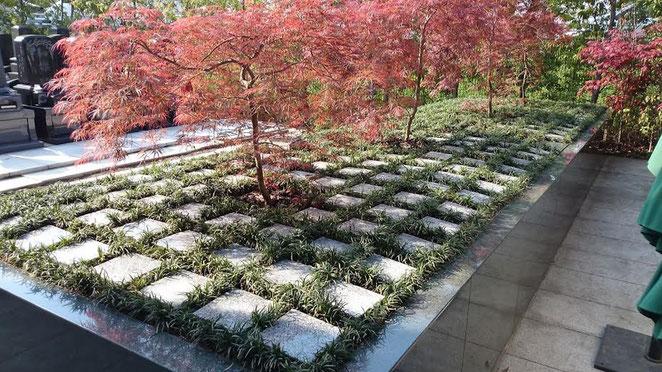 ご家族単位 水元公園「ともしびの郷」樹木墓地