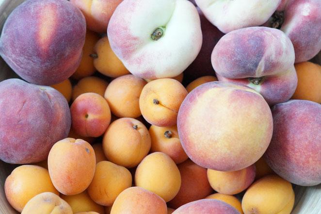 Aprikosen und Pfirsiche