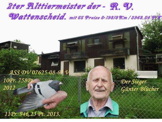 Günter Blücher.