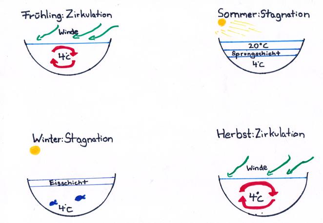Abb. 2: Jahreszeitliche Temperaturunterschiede im See