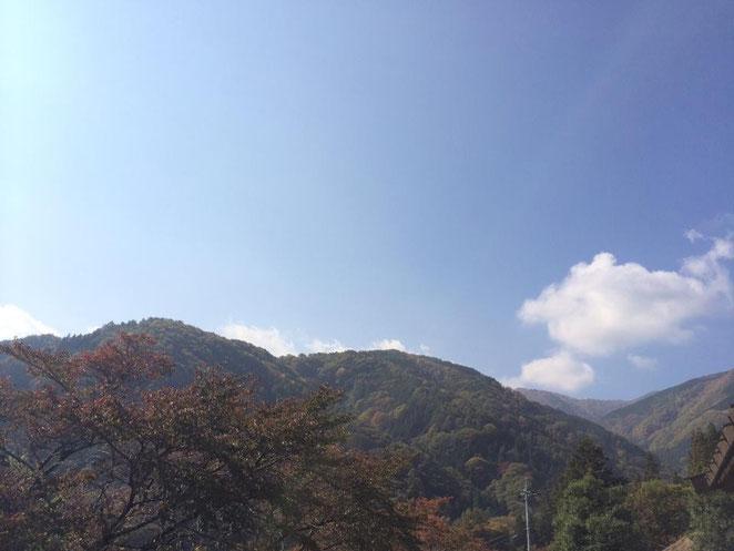 はゝき木館後ろの山