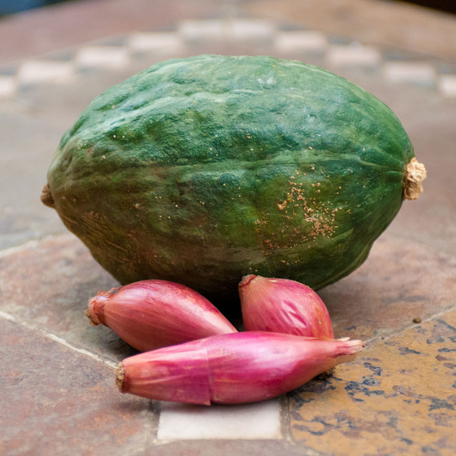 すくな・くりりん交配南瓜  玉葱「ロッサ・ルンガ」