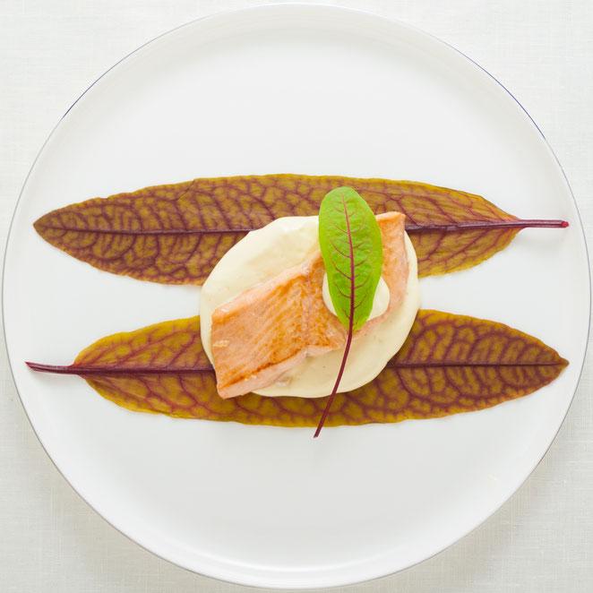 秋鮭のソテー、レッド・ソラルと豆乳クリームソースで。。。