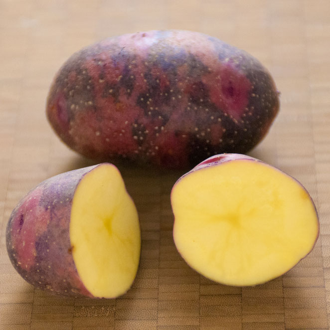 ジャガイモ「グラウンド・ペチカ」