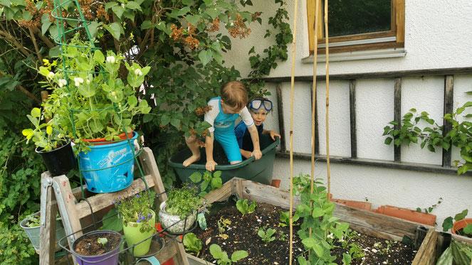 Unser neuer Pool im Garten!