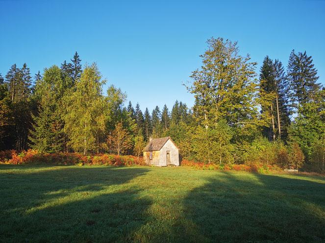 Thoreau Hütte Wildniscamp Falkenstein