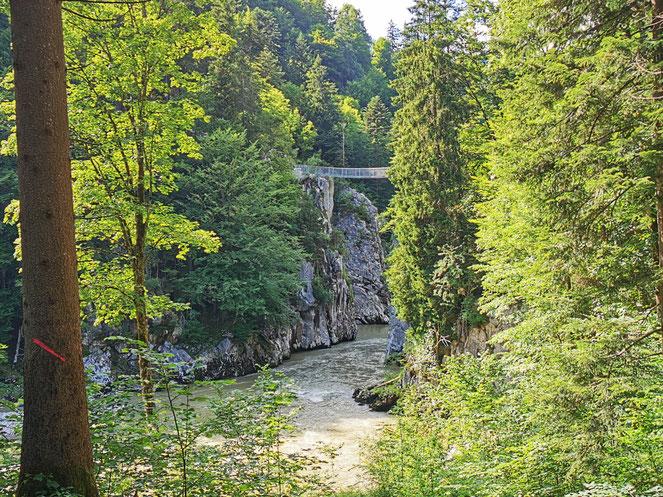 Die neue Hängebrücke am Klobenstein